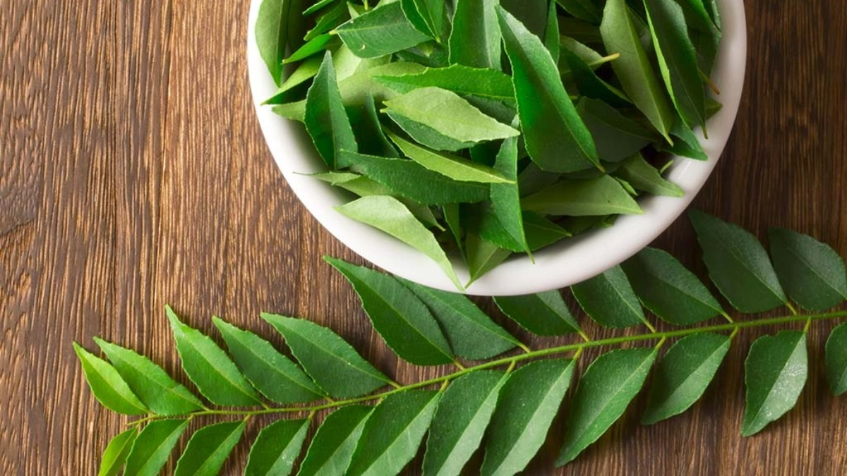 Are Curry Leaves Good For Hair?
